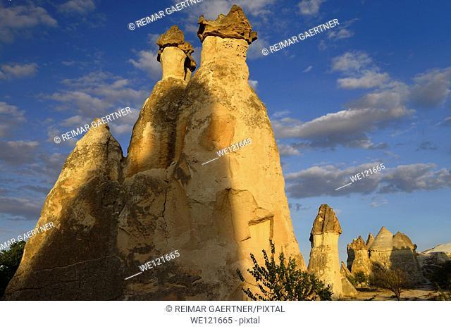 Fairy chimneys and shadows in golden light at sunset in Pasabag Monks Valley Cappadocia Turkey