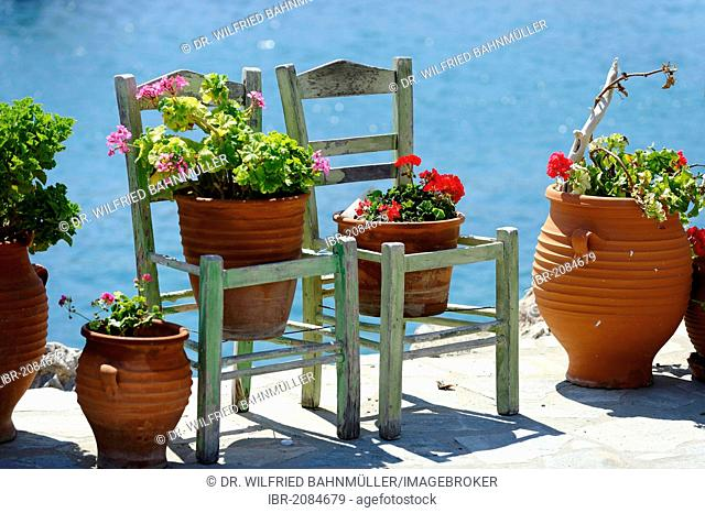 Flower pots, chairs, Kokkari, Samos Island, Aegean, southern Sporades, Greece, Europe