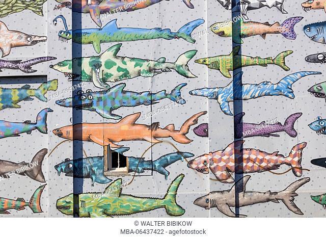 New Zealand, North Island, Wellington, shark mural, waterfront