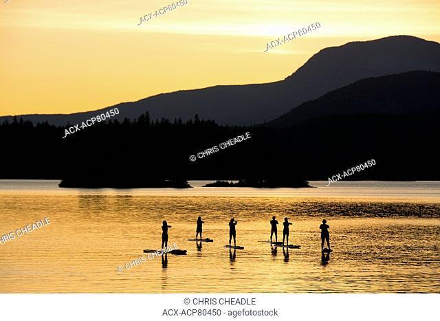 Stand Up Paddleboard group on Ruby Lake, Sunshine Coast, British Columbia, Canada