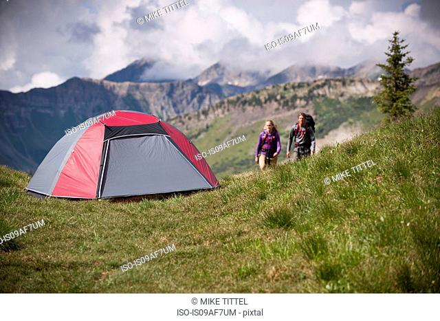 Camping near Paradise Divide in the West Elk Mountains, Crested Butte, Colorado, USA