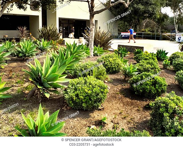 A post office in Laguna Niguel, CA, is landscaped with drought resistant plants requiring no irrigation. Note succulents