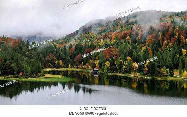 Low stratus above autumnal mixed coniferous forest at Lake Lautersee, Upper Bavaria