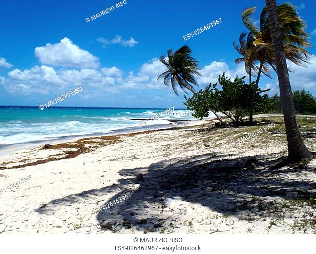 The awesome beach of Maria La Gorda