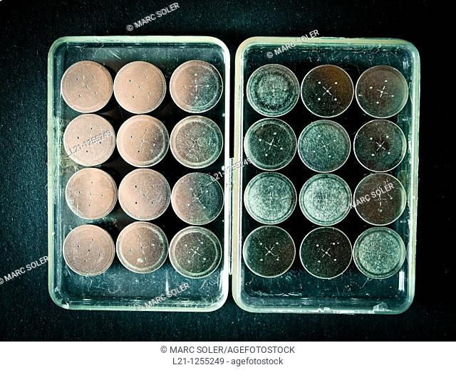 Button batteries in a plastic box for recycling