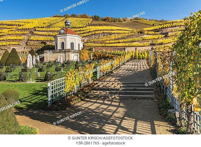 The Belvedere is part of the gardens of the castle Wackerbarth. The baroque castle Wackerbarth is a wine-growing estate in the city district Niederloessnitz