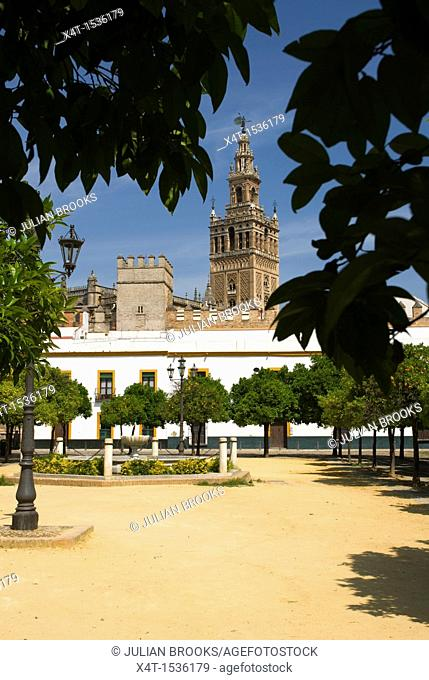 The Giralda tower in Seville, Spain, seen from the grounds of the castle