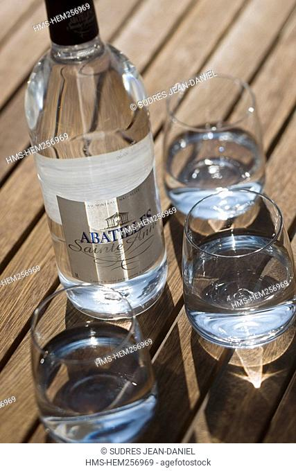 France, Gironde, Arcachon, Abatilles Mineral water from Sainte Anne des Abatilles Spring