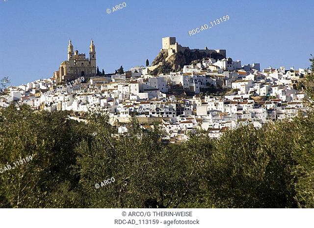 Olvera with church Encarnacion and moorish castle white villages Pueblos Blancos Andalusia Spain