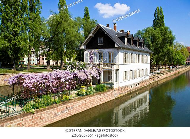 House with Lilac on the River Ill in Strasbourg, Alsace, France