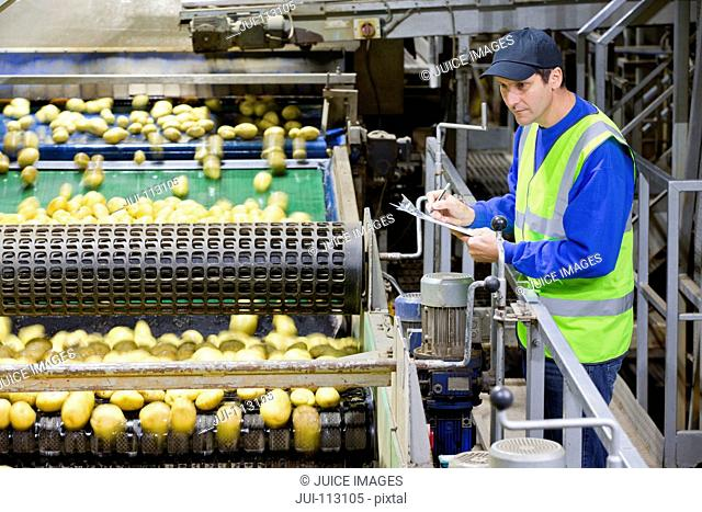 Worker with clipboard on platform examining potatoes on conveyor belt in factory