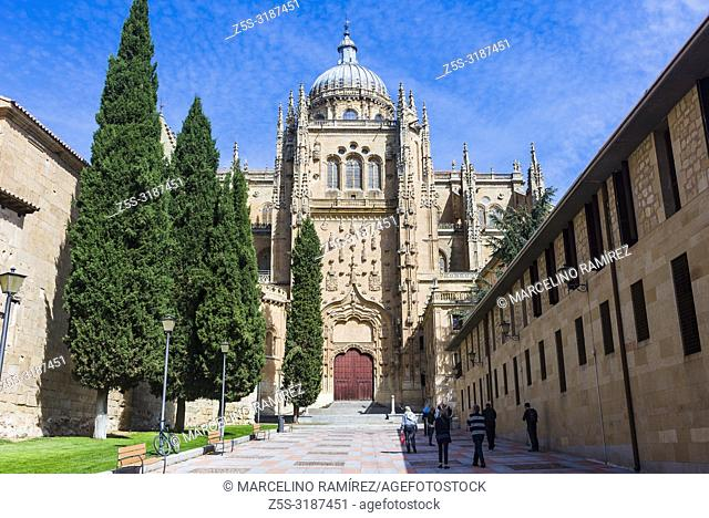Patio Chico, with the gate of the south transept of the New Cathedral in front and the apses of the Old Cathedral on the left