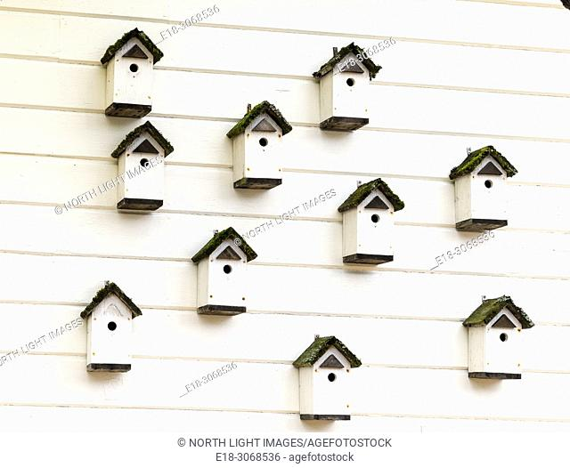 USA, WA, La Connor. Ten white birdhouses on the side of wooden building
