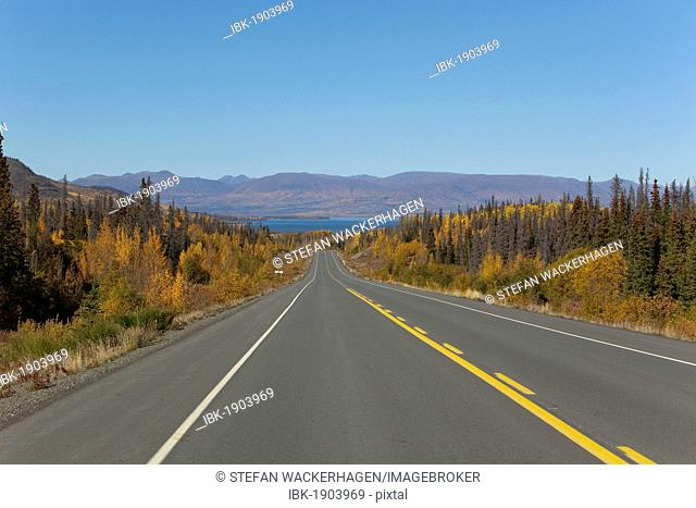 Haines Road towards Haines Pass, Alaska, Dezadeash Lake behind, Indian Summer, leaves in fall colours, autumn, St. Elias Mountains behind
