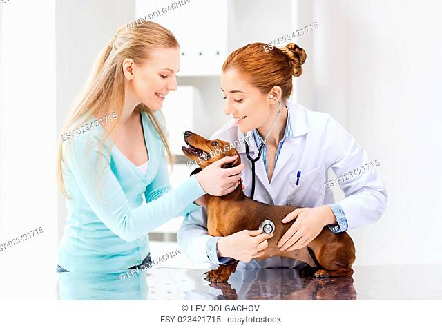 medicine, pet, animal, health care and people concept - happy woman and veterinarian doctor with stethoscope checking up dachshund dog health at vet clinic