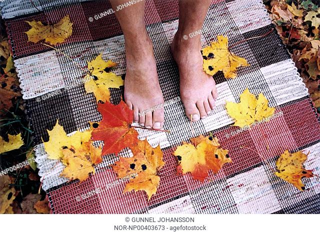 Bare feet and autumn leaves on a carpet