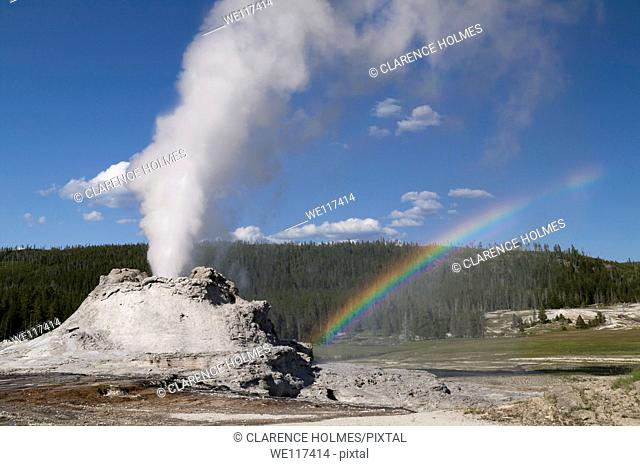 A rainbow appears as Castle Geyser erupts in Yellowstone National Park, Wyoming, USA