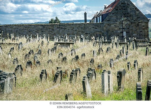 Forgotten graves in overgrown field, Whitby, Yorkshire, UK