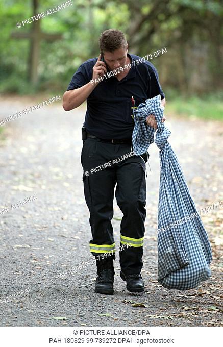 29 August 2018, Meerbusch, Germany: Chief Firefighter and Snake Expert of the Düsseldorf Fire Department Sebastian Schreiner carries the captured Yellow...