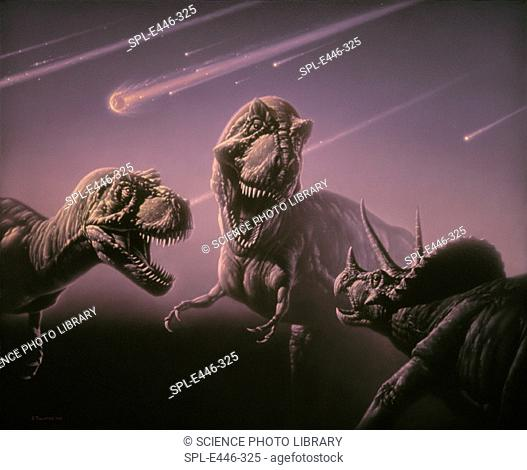 'Death of the dinosaurs.  Artwork of two  Tyrannos- aurus rex dinosaurs attacking a Triceratops (lower right), oblivious to the asteroids about to strike the...
