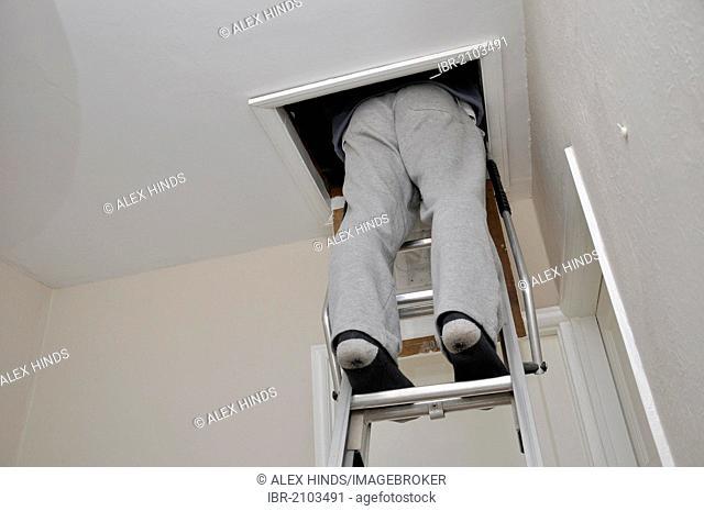 Man climbing loft ladder