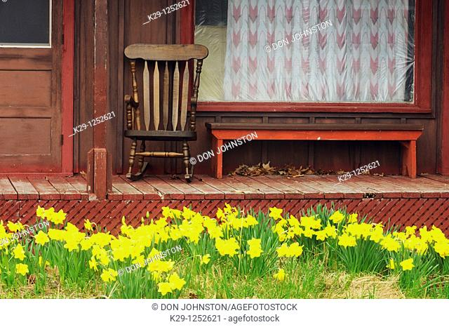 Verandah with rocking chair and bench and daffodils