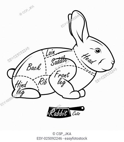 And Rabbit Butcher Stock Photos And Images