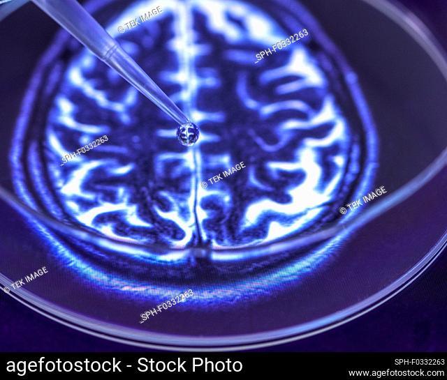 Neurology research, conceptual image