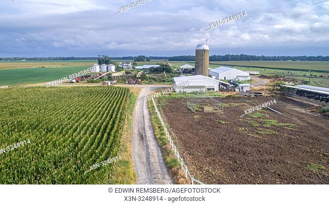 Aerial view farm buildings and equipment with corn field, Pokomoke, Maryland