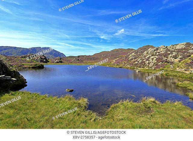 Innominate Tarn on Haystacks, Cumbria, Lake District National Park, England, UK