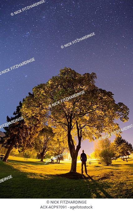 Lone figure in the park under stars, British Columbia, Canada