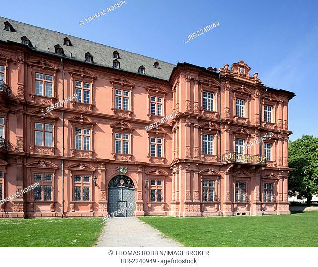Former Electoral Palace in Mainz, Roman-Germanic Central Museum, Rhineland-Palatinate, Germany, Europe, PublicGround