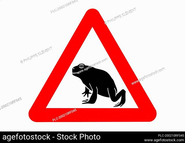 Warning sign for migrating amphibians / toads crossing the road during annual migration in the spring against white background