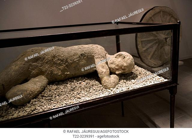 Pompeii (Italy). Body in showcase in the archaeological site of the city of Pompeii