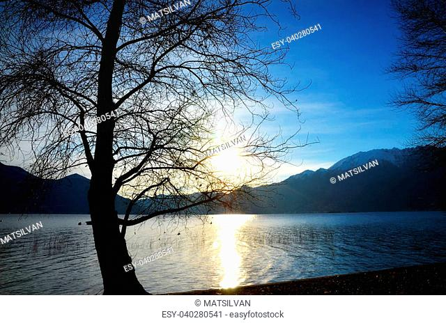 Sunlight over a lake with mountains and a tree
