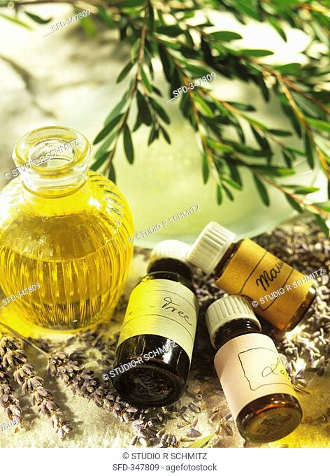 Tea tree, lavender and manuka oils in small bottles
