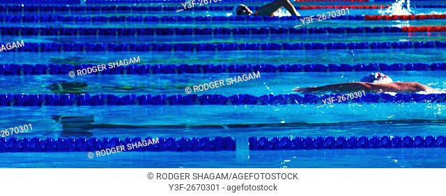 Swimming. Lane training in a pool