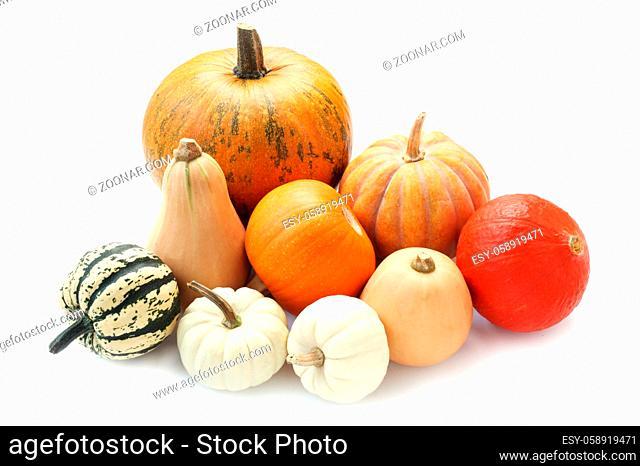 Varieties Of Pumpkin Isolated On White