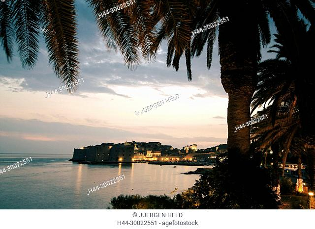 Palm trees and old Town Center of Dubrovnik at sunset , Dalmation Coast, Croatia