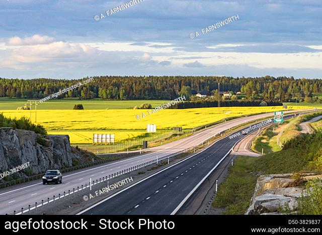 Vasteras, Sweden A field of rapeseed and yellow flowers and the E18 highway