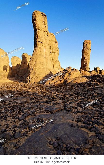 Cylindrical rock formations in El Ghessour, Tassili du Hoggar, Wilaya Tamanrasset, Sahara Desert, Algeria, North Africa