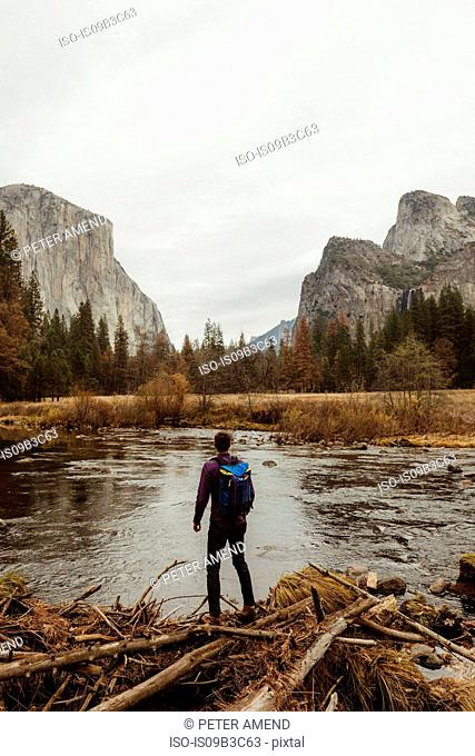 Rear view of male hiker looking out at mountain, Yosemite National Park, California, USA