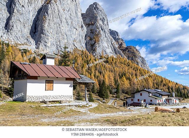 Passo di Col di Caneva, Province of Belluno, Veneto, Italy, Europe