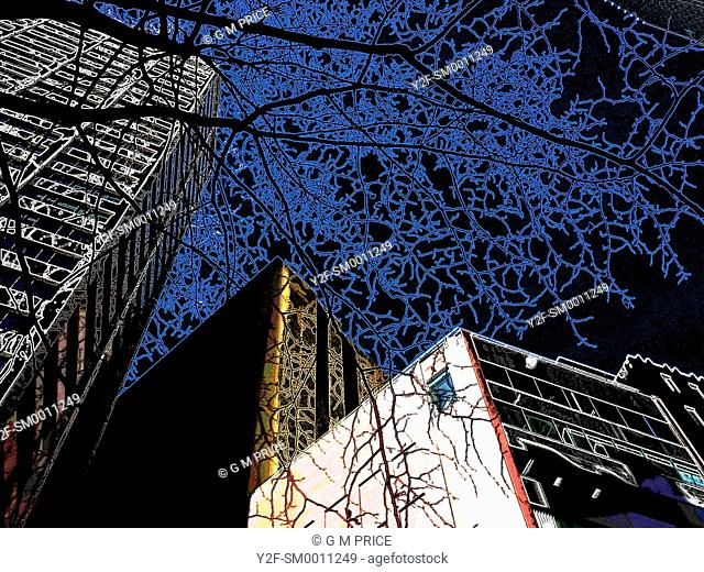 strange, artificial colour image of building skyline and winter tree branches against a black sky
