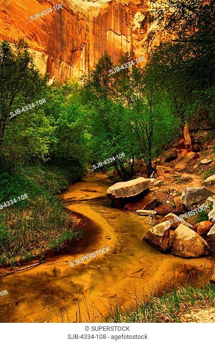 Calf Creek and Calf Creek Canyon, in Grand Staircase - Escalante National Monument, Utah