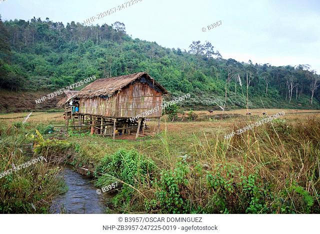 Traditional houses and fields created by deforestation of forest. Doi Pha Hom Pok National Park. Thailand