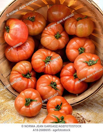 Tomatoes, Farmers Market, Tucson, Arizona, USA