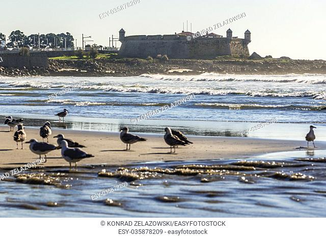 Fort of Sao Francisco do Queijo (commonly known as Castle of Cheese) in Porto city, Portugal. View from beach of Nevogilde district beach