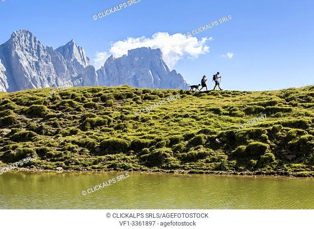 Hiking in Paneveggio Pale di San Martino Regional Park, in the background Cimon della Pala peak. Trentino Alto Adige, Italy, Europe