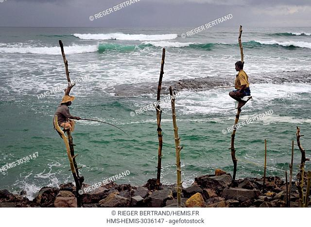Sri Lanka, Southern province, Galle district, Weligama, Midigama beach, Pole Fishermen or Stilt Fishermen ply their trade along the Galle coastline
